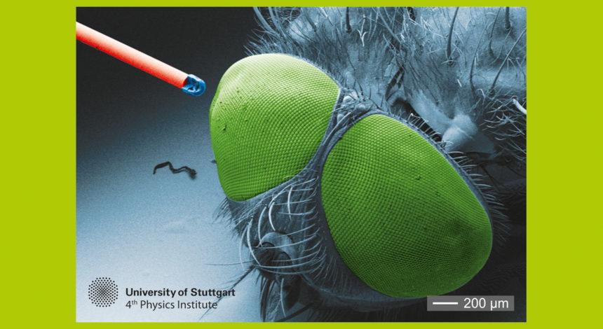 Uni Stuttgart mit weltweit kleinster 3D-gedruckter Linse